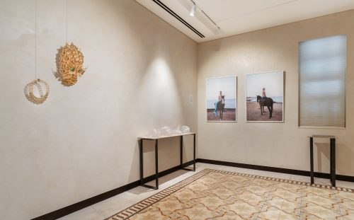 Installation view<br />