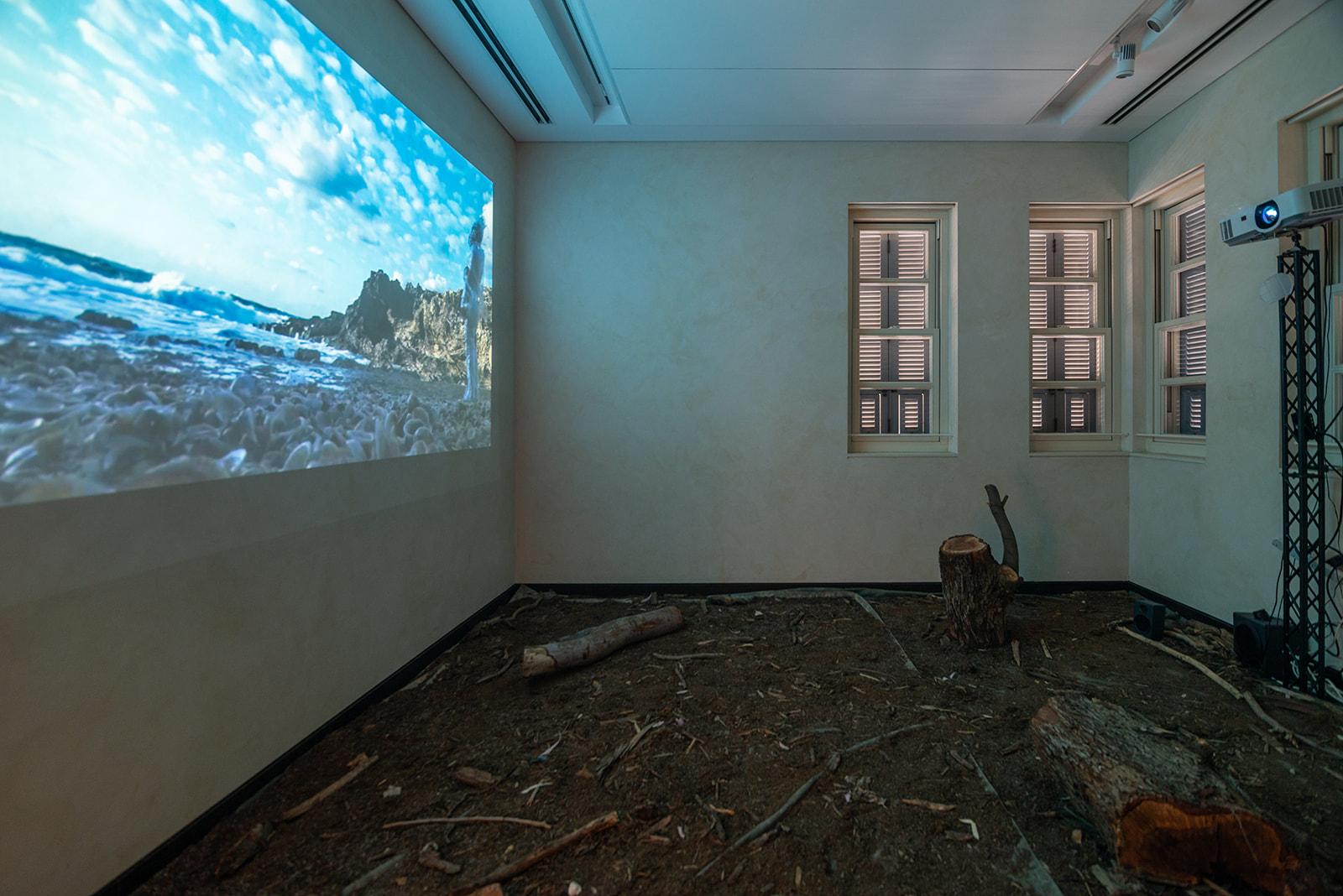 טל מזומן, Pit Intrinsic, שנה: 2021, מיצב ווידאו, ערוץ אחד וסאונד, 9:00 דקות<br /> צילום: נטע קונס