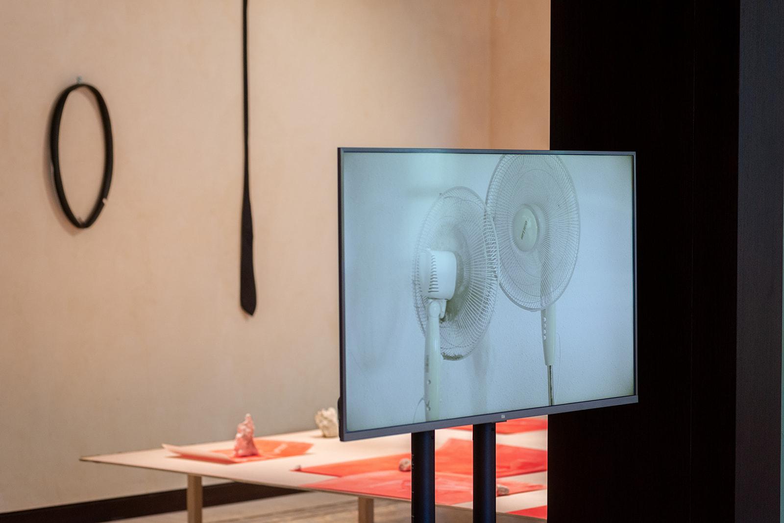 Kobi Amiel, CRAZY, 2020, video<br /> Kobi Amiel, Untitled, 2021, ready-made<br /> Photography: Neta Cones